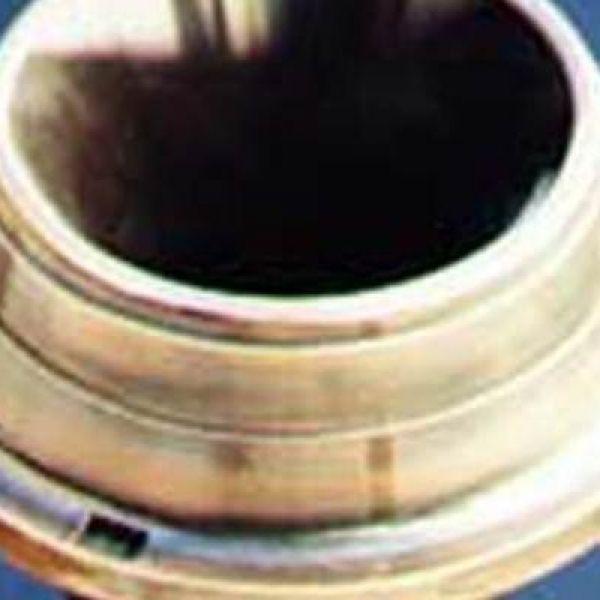 bronze-tulip-vase24CC9377-2B7F-ACD0-C9E7-680644C608C2.jpg
